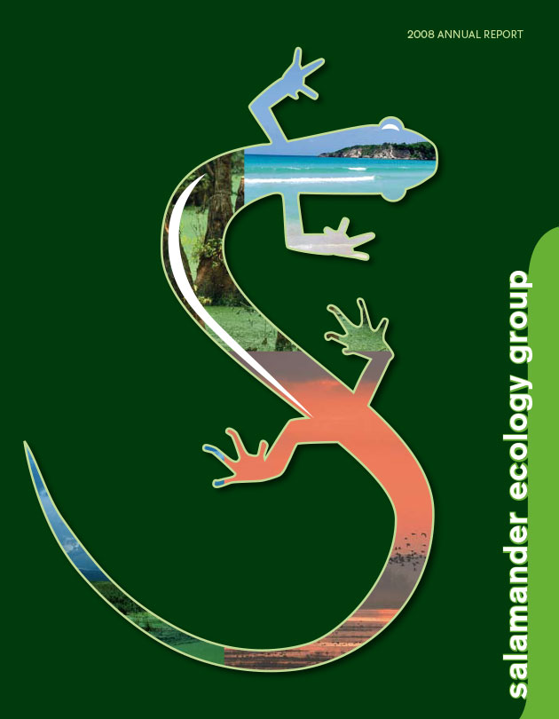 salamander-ecology-group-1