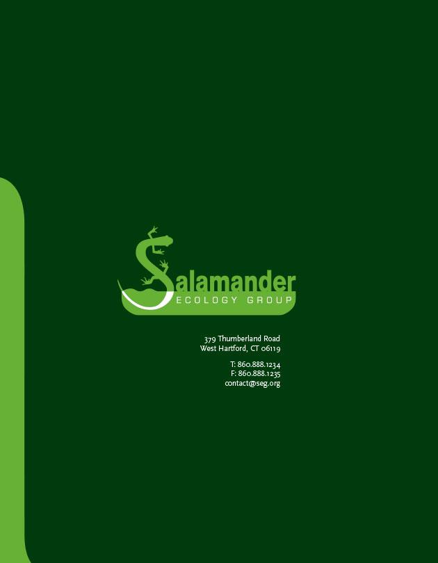 salamander-ecology-group-7