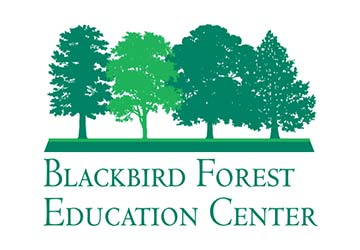 Blackbird Forest Educational Center Logo