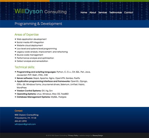 will-dyson-consulting-3